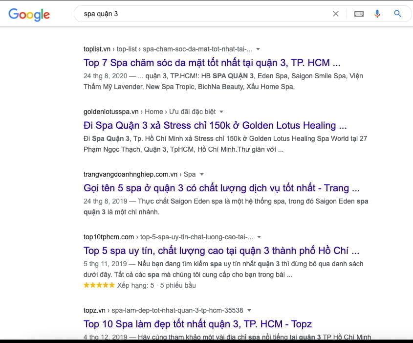dịch vụ seo spa.jpg