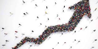 seo service overall customer growth